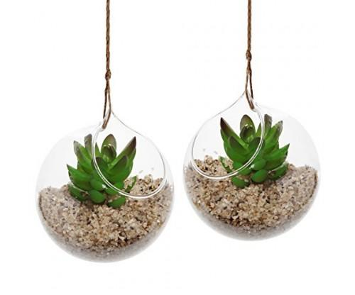 Hanging Air Plant Terrarium Planter