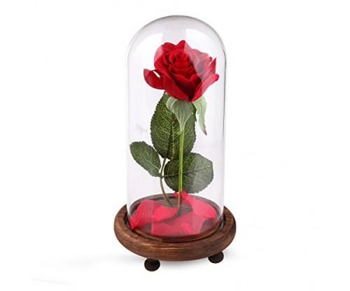 """""""Beauty and the Beast"""" Rose Silk Kit"""