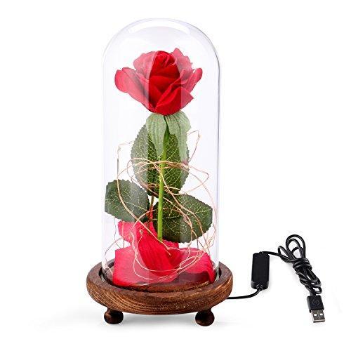 Beauty The Beast Full Silk Rose Set Led Light Thatsweetgift