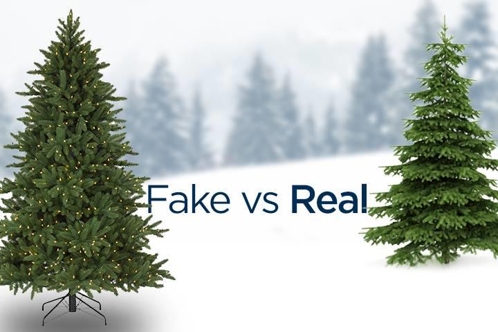 Real Vs Fake Christmas Tree Whic One Is Environment