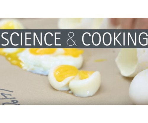 The Nerdy Cooking Tips and Facts that Will Amaze Kids into Science