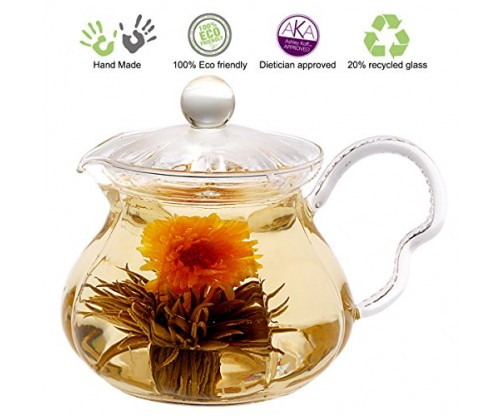 Tea Beyond GTP2005 Heat Resistant Glass Teapot