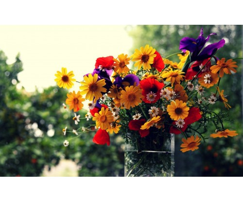 Flower Gifts: The Right Choice of Flowers for Any Occasion