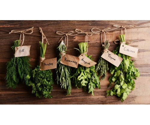 Tips for Having a Flourishing an Indoor Herb Garden