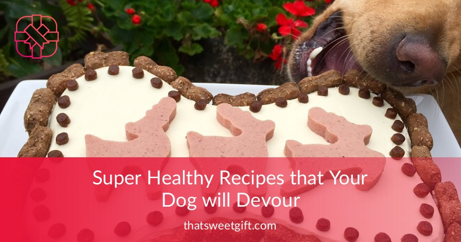 Dog Birthday Cake Recipes Totally Safe For Dogs